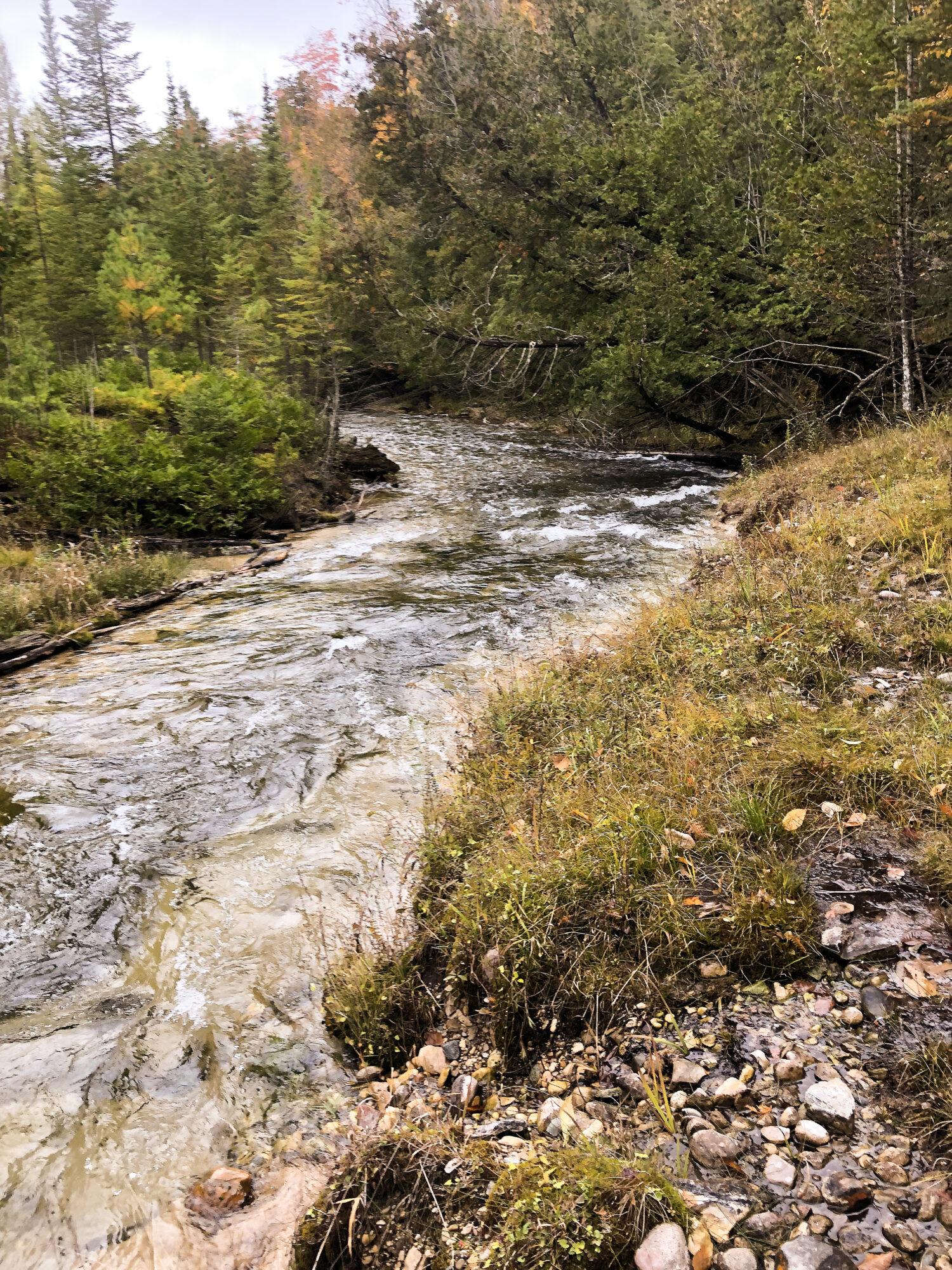 Drettmann Ranch Wolcott Creek